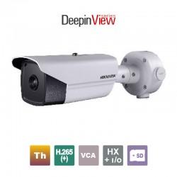 HIKVISION DS-2TD2166-15/V1