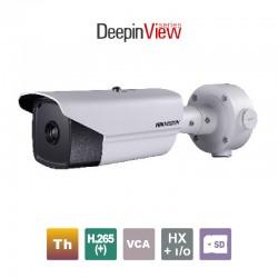 HIKVISION DS-2TD2166-25/V1